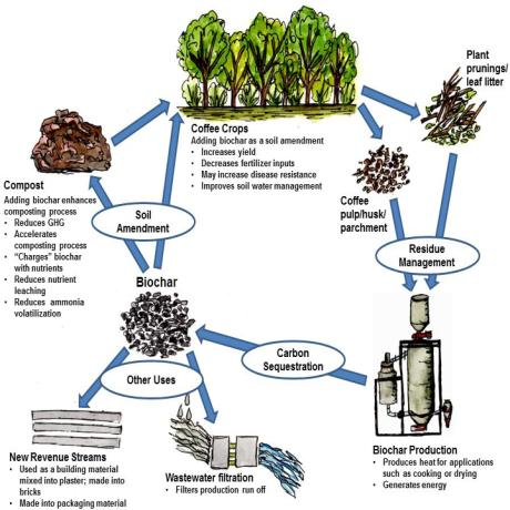 image:How Biochar Can Improve Sustainability for Coffee Cultivation and Processing