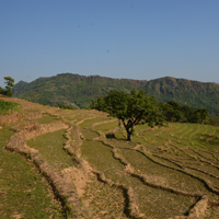 image:Climate Farming Odyssey to Nepal