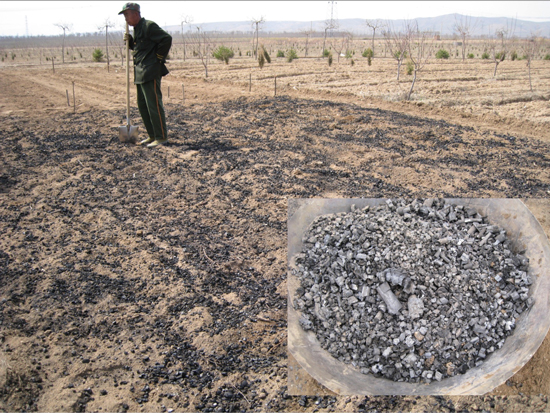 tBJ:Biochar in Japan: Makoto Ogawa recalls a lifetime of work on