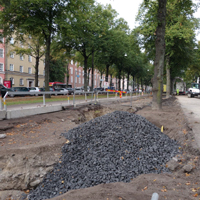 image:Planting Urban Trees with Biochar