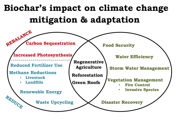 mitigation&adaptation.jpg
